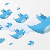 نمایش تعداد دنبال کننده های توییتر در وردپرس