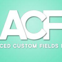 ایجاد زمینه دلخواه وردپرس توسط افزونه Advanced Custom Fields