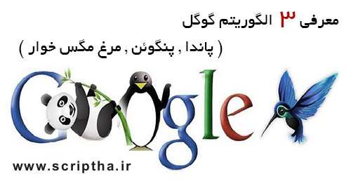 معرفی 3 الگوریتم گوگل ( پاندا , پنگوئن , مرغ مگس خوار )