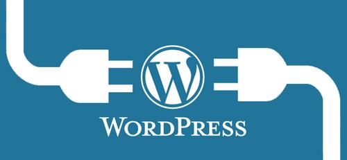معایب استفاده زیاد از پلاگین ها و افزونه های وردپرس در طراحی سایت