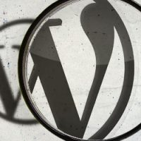 کد جستجو در وردپرس و معرفی افزونه جستجو پیشرفته وردپرس