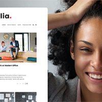 پوسته وبسایت شخصی Alia وردپرس نسخه 1.34