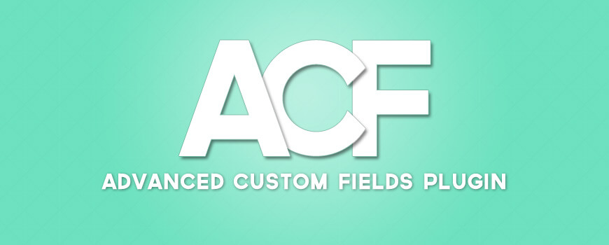افزونه Advanced Custom Fields​